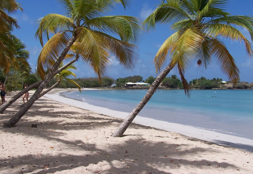 Meilleur moment pour visiter la Martinique